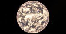 092 Pluvialis RS 0-0-0-733-14626-7-543358-1243 5.jpg