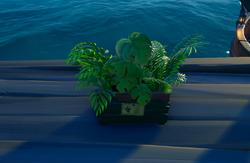 Caja de plantas.png
