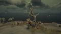 The Sunken Grove 02.png
