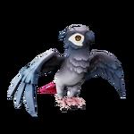 Periquito de alas grises.png