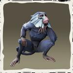 Macaco de medianoche añil inv.png