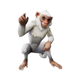 Capuchino nuboso.png