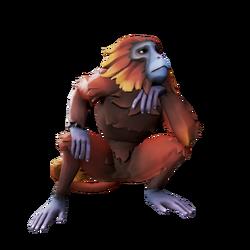 Macaco del sol rojo.png