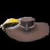Sombrero de soberano.png