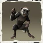 Capuchino de barba blanca inv.png