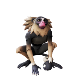 Nightpaw Marmoset.png