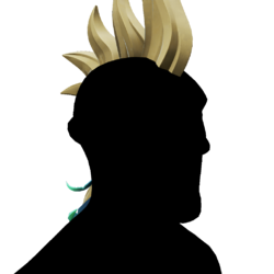 Parrot Hair.png