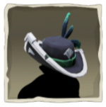 Nightshine Parrot Hat inv.png