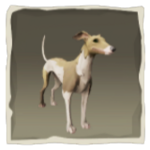 Streaked Whippet inv.png