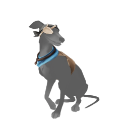 Whippet Bilge Rat Outfit.png