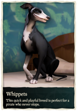 Whippets.png