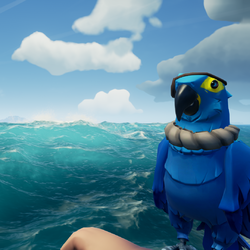 Azure Macaw BR.png