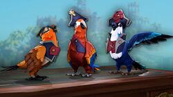 Parrots Aplenty Bundle.jpg