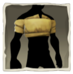 Yellow Cropped Shirt inv.png