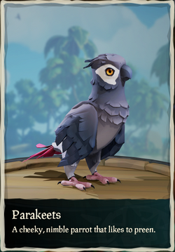 Parakeets.png