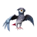 Grey Wing Parakeet.png