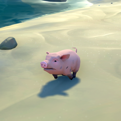 Pink Bristled Pig.png