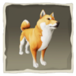Coral Inu inv.png