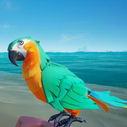 Bright Belly Macaw1.png