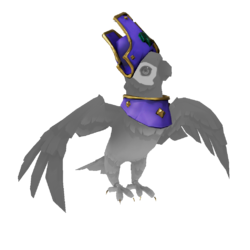 Parakeet Pirate Legend Outfit.png