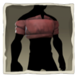 Red Cropped Shirt inv.png