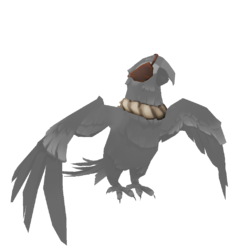 Macaw Bilge Rat Outfit 2.png