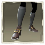 Ceremonial Admiral Boots inv.png