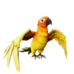Flame Feather Macaw.png