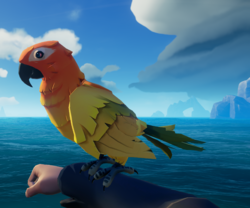 Flame Feather Macaw1.png