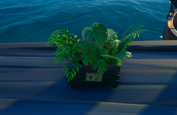 Crate of Plants.png