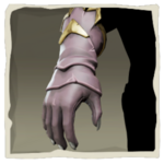 Parrot Gloves inv.png