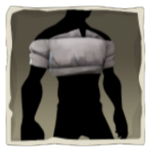 Grey Cropped Shirt inv.png