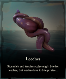 Leeches.png
