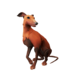 Redback Whippet.png