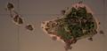 DiscoveryRidge Map.png