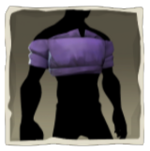 Purple Cropped Shirt inv.png