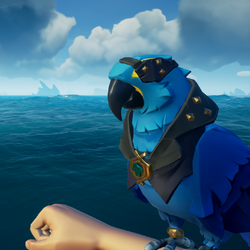 Azure Macaw PL.png