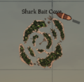 Shark bait cove.png