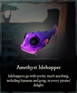Amethyst Islehopper.png