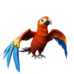 Crimson Macaw.png