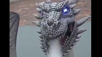 MR124527_Winter_Dragon-0
