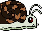 Operation Mollusca