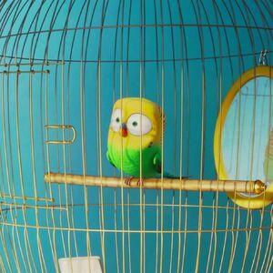 Sweetpea Gallery The Secret Life Of Pets Wiki Fandom