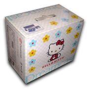 Kittykastbox2