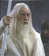 Gandalf-the-white