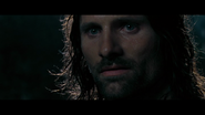Aragorn 8