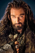 Thorin ecu de chene
