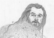Thorin...................................................................