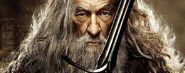Gandalf 5415485