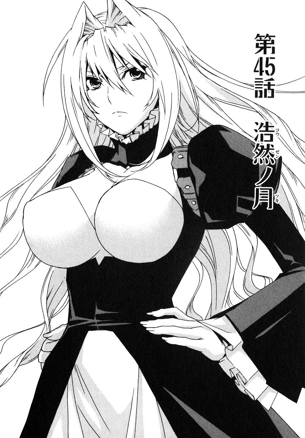 Sekirei manga chapter 045.jpg